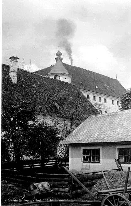 bighartheim2.jpg