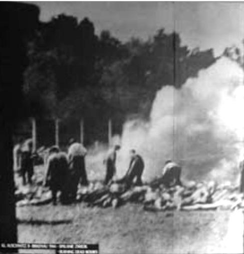 Wirkung zyklon b Gaskammer (Massenmord)